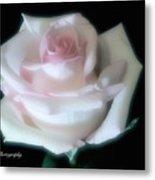 Soft Pink Rose Bud Metal Print