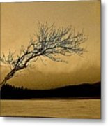 Solitude In A New Key Metal Print