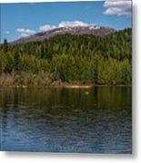 South Skookum Lake Metal Print