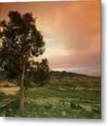 Spanish Landscape Metal Print