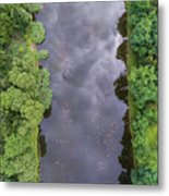 Summer Landscape. Green Trees At Riverbank In Poland. Metal Print