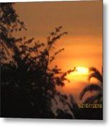 Sun View Metal Print