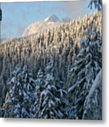 Sunlight Covered Trees In The Mountains Of British Columbia Metal Print