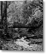 Swan Creek Park Metal Print