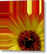 Swish Design Set Metal Print