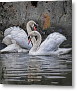Tango Of The Swans Metal Print