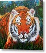 Tiger- Large Work Metal Print