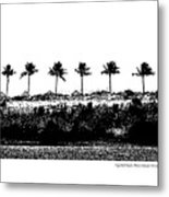 Tiger Tail Beach Metal Print
