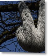 Tree Decorated With Apes Metal Print