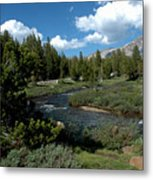 Tuolumne Meadows Metal Print