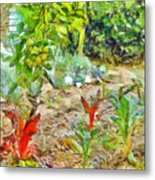 Vegetable Garden Metal Print