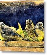 Vintage Bluebird Print Metal Print