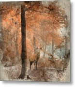 Watercolour Painting Of Beautiful Image Of Red Deer Stag In Fogg Metal Print