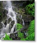 Waterfall In Cradle Mountain Metal Print