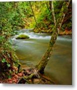 Whatcom Creek Metal Print by Idaho Scenic Images Linda Lantzy