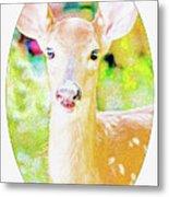 White-tailed Virginia Deer Fawn Metal Print