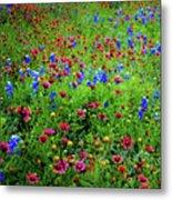 Wildflowers In Bloom Metal Print
