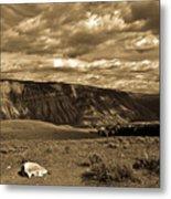 Yellowstone Sky Metal Print