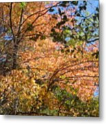 Autumn In Ma Metal Print