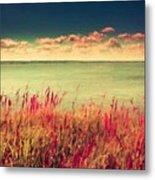 Great Landscape Metal Print