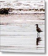 Private Beach Bastendorff Metal Print