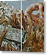 2008 05 12-2008 05 21 Metal Print