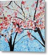 201726 Cherry Blossoms Metal Print