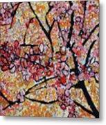 201727 Cherry Blossoms Metal Print
