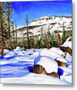 #202 Donner Summit Metal Print