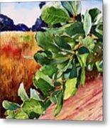 #203 Blue Oak Leaves 2 Metal Print