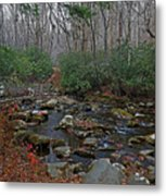 Great Smoky Mountains National Park Metal Print