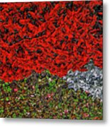 Flower Carpet. Metal Print