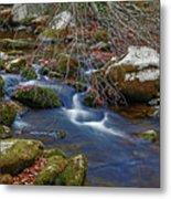 Great Smoky Mountains National Park Metal Print