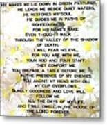 23 Rd Psalm Metal Print