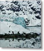 Alaska_00024 Metal Print