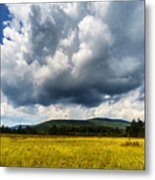 Cranberry Glades Botanical Area Metal Print