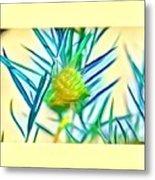 Swan Plant Metal Print