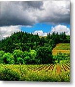 2623- Comsrock Winery Metal Print