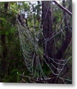 Australia - Uniquely Yours Spider Web Metal Print