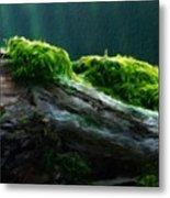 Nature Landscape Pictures Metal Print