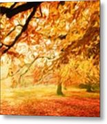 Landscape Nature Metal Print
