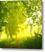 Nature Landscape Pictures Metal Print