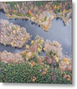 Aerial View Of The Forrest With Different Color Trees.  Metal Print