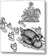 Andersen: Ugly Duckling Metal Print