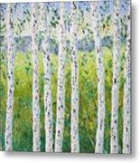 Aspen Trees Colorado Metal Print