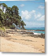 Beach In New Zealand Metal Print
