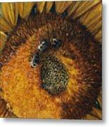 3 Bees Metal Print