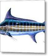 Blue Marlin Metal Print