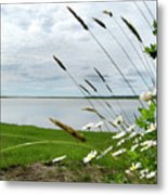 Cape Cod Salt Pond Metal Print