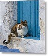Cat In A Doorway, Greece Metal Print